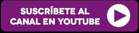 boton_youtube sociedad por acciones simplificadad